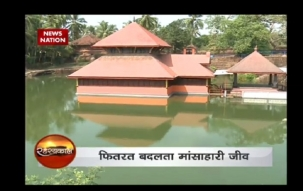 Padmanabhaswamy Temple: Meet a vegetarian Crocodile  who guards Ananthapura Lake